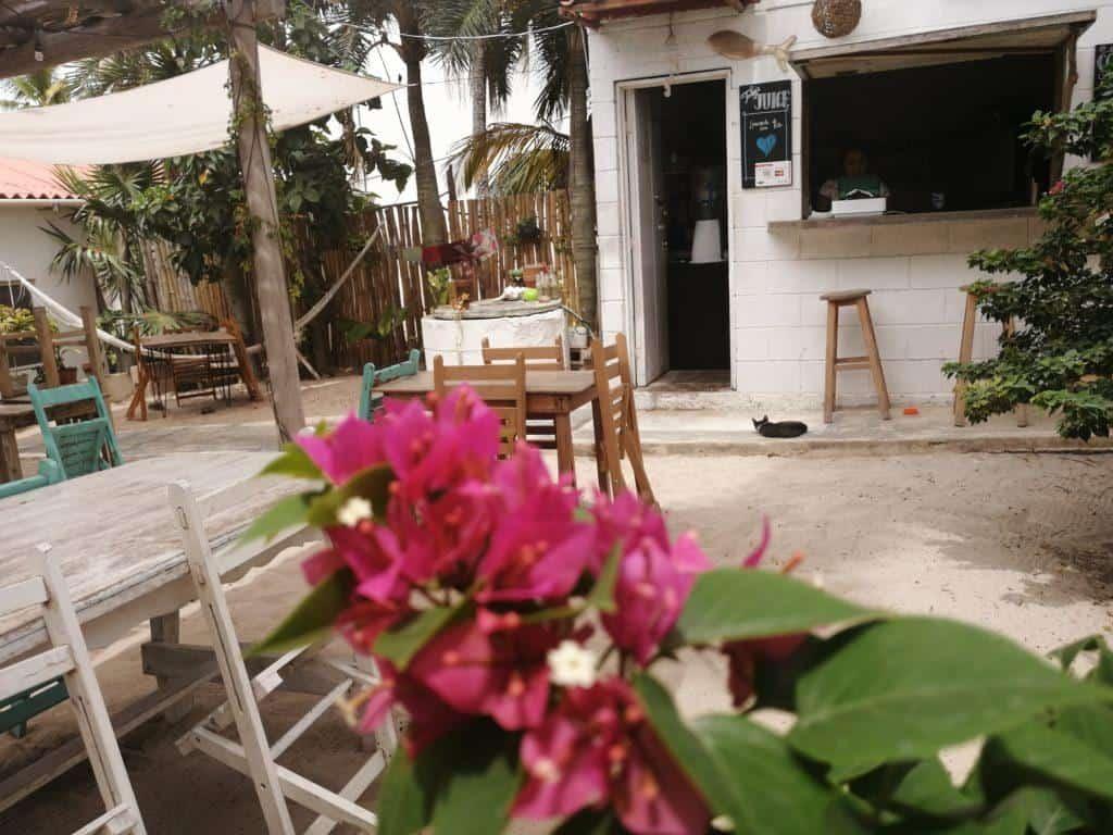 Naia Cafe courtyard