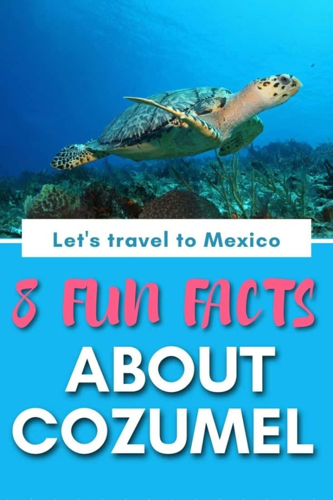 fun facts about cozumel mexico
