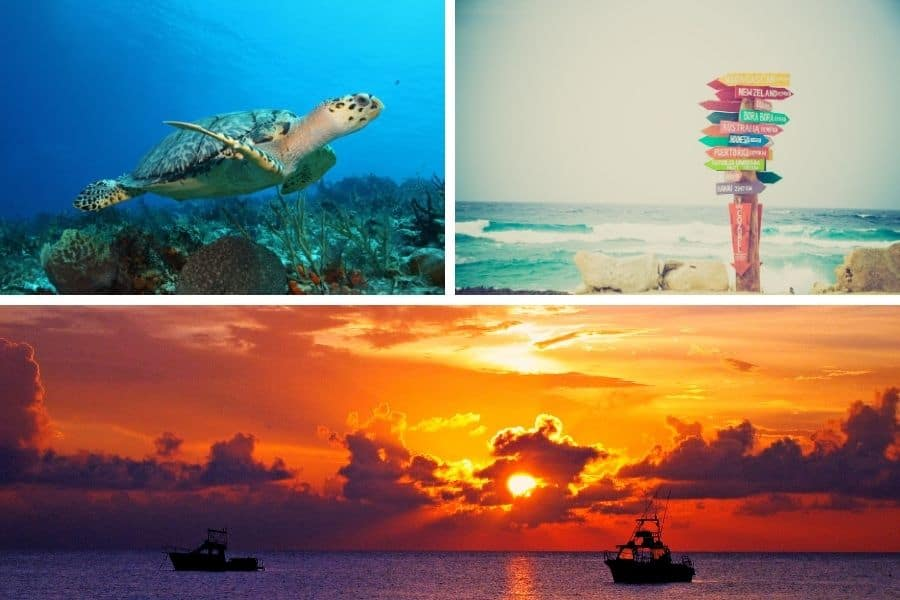 how to get to cozumel