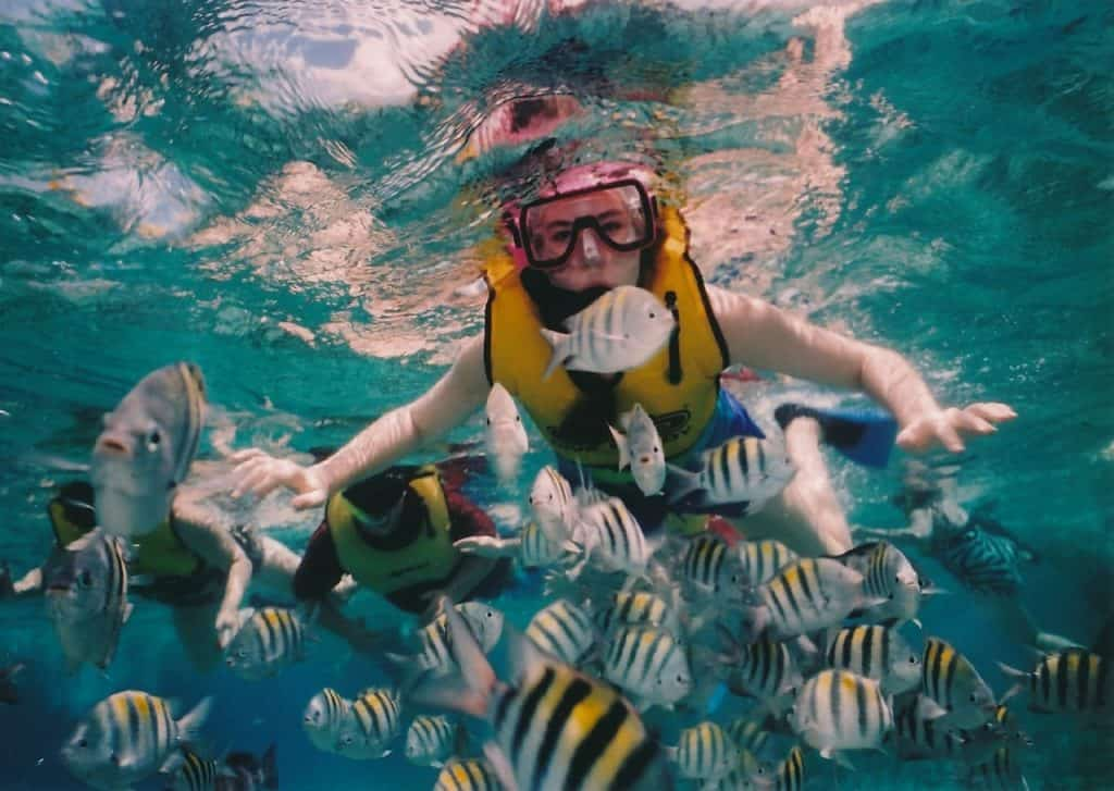 fun facts about cozumel reef snorkeling, snorkeler, reef