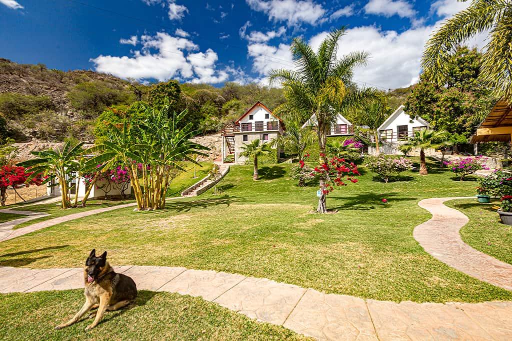 bucareli resort
