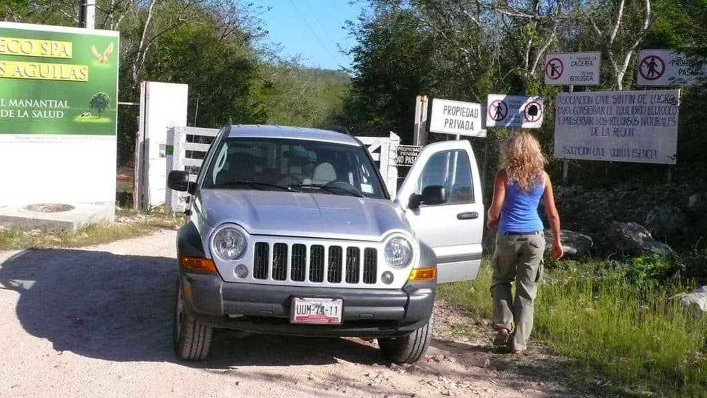 a girl by a car with door open at a gate