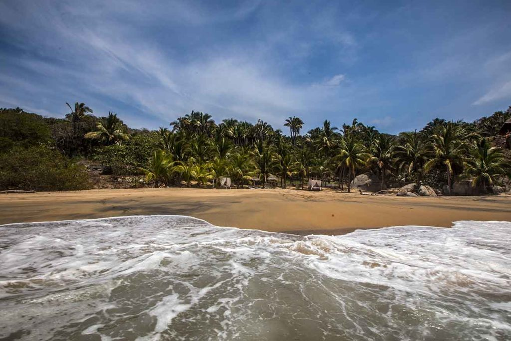Playa Carricito Sayulita - surrounded by palms