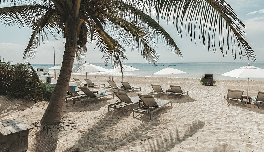 beach with sunbeds and palm trees in Tulum