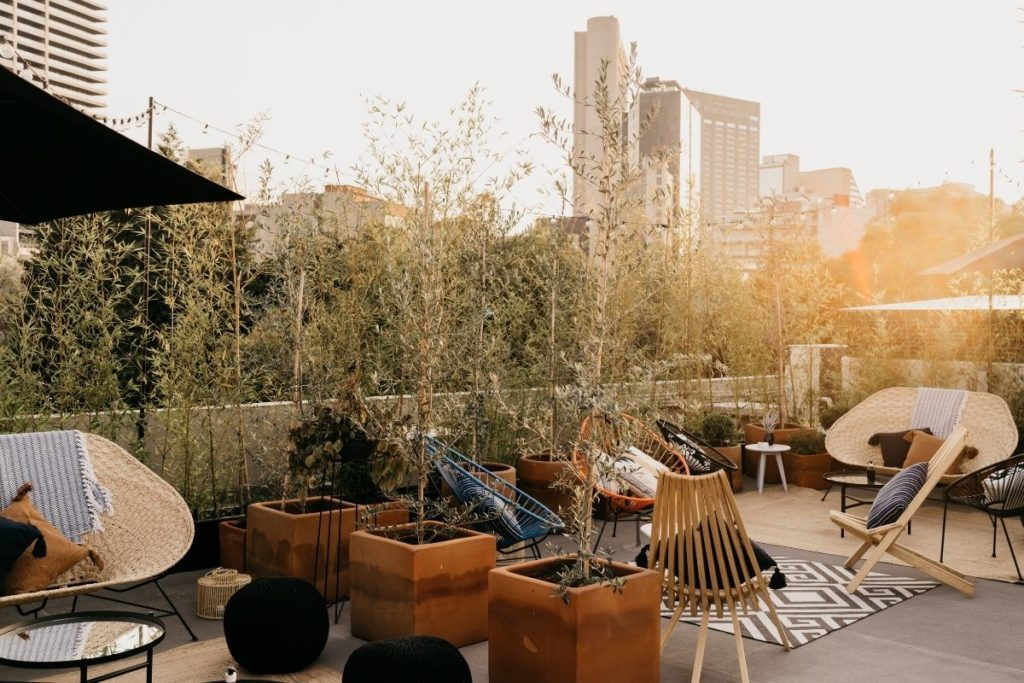 roof top terrace with plants