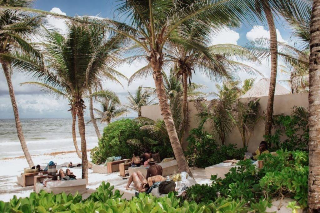 ziggy beach chairs