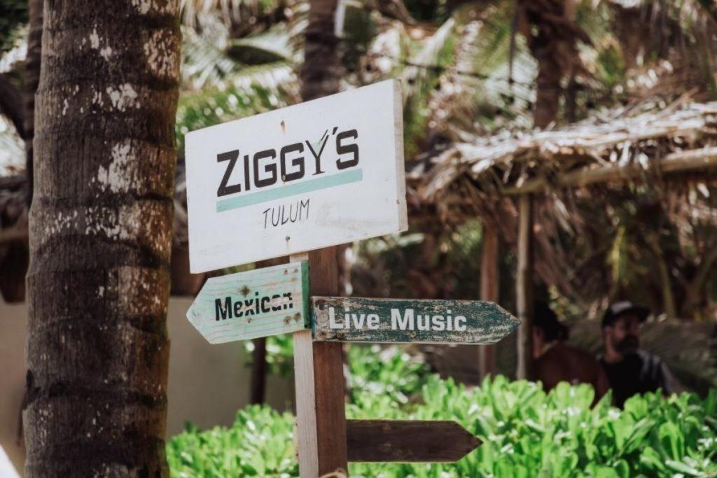 ziggy sign