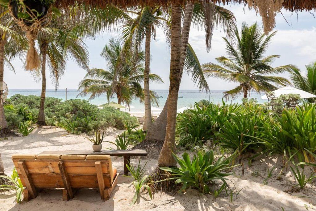 tulum jungle and beach