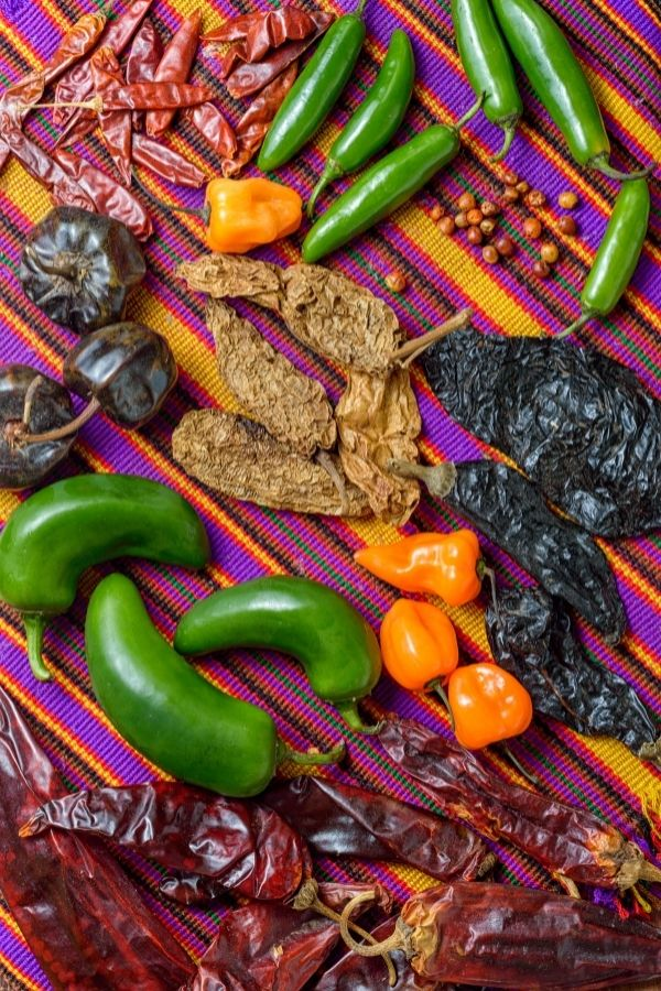 different types of Chile