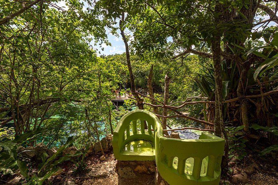 cenote azul lover seats in the jungle