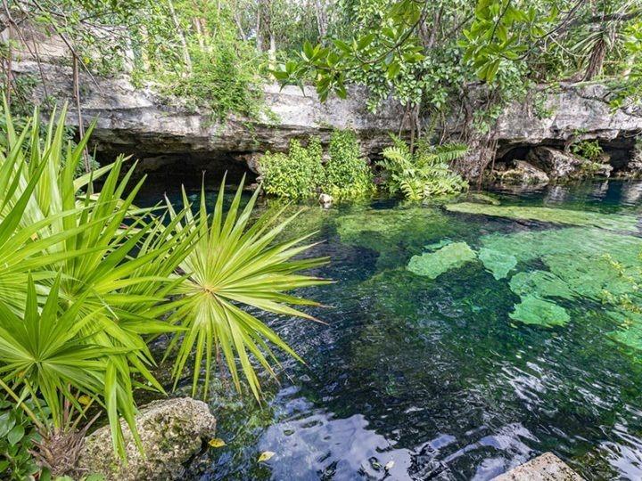 cenote cristalino near tulum