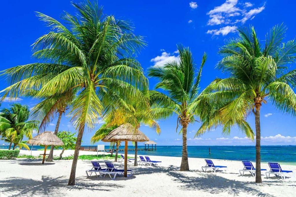 Beach chairs among palm trees on Cancun beach