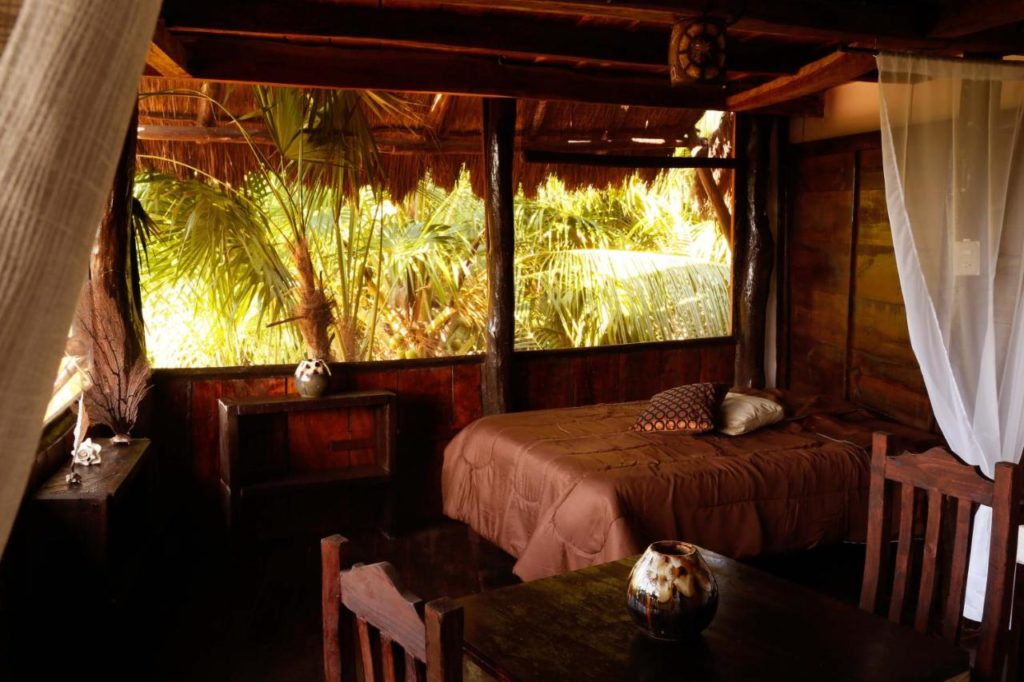 Casa selva de luz