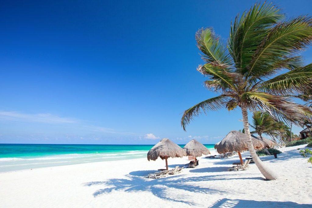 Tulum Beach Palms