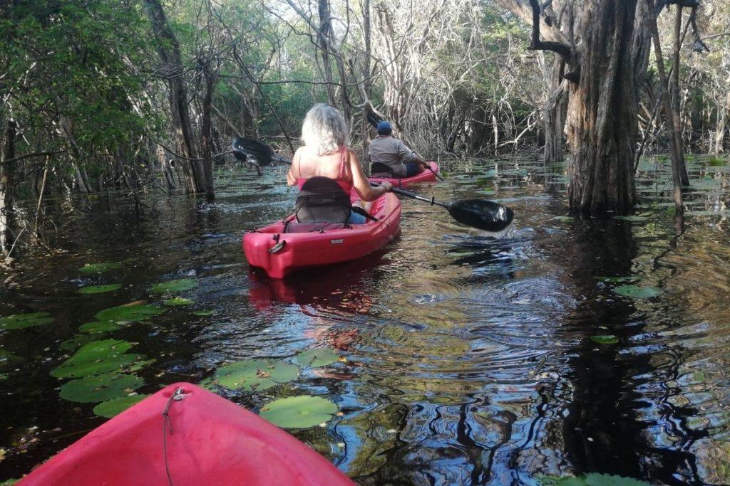 kayak tour among palo de tinte