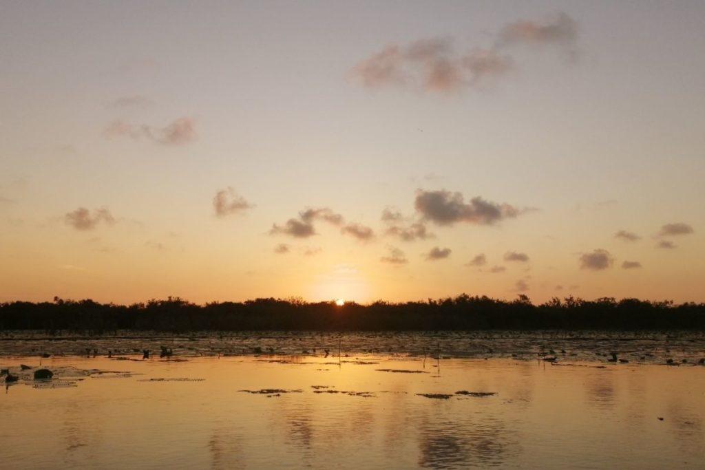 kayak tour sunset